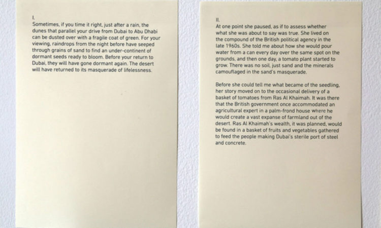 Detail from Dubai Gardens, Sharjah Biennial 13, with Hind Mezaina, courtesy Sharjah Art Foundation