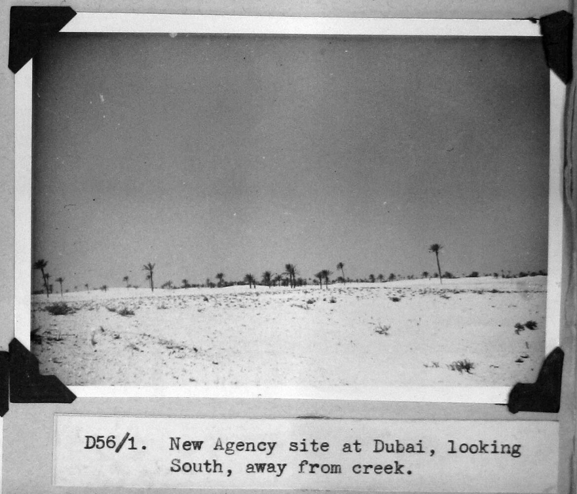 New agency site at Dubai, looking South, away from creek.